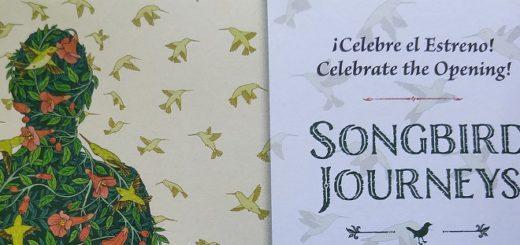 songbirdsjourney3